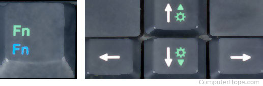 Fn key, and brightness keys on the up and down keys