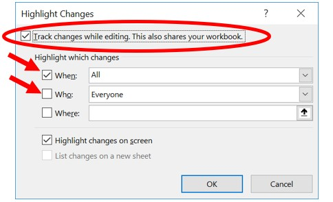 Highlight Changes options in Microsoft Excel