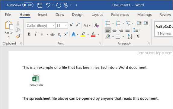 Embedded file in a Microsoft Word document