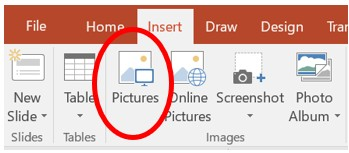 How to insert a picture in Microsoft PowerPoint